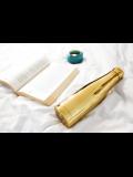 Borraccia termica in acciaio inossidabile Woodway – Well Gold Chrome